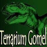 Тerrarium Gomel