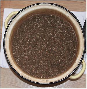 Полигон для эксперимента, или скейп руками чайника.